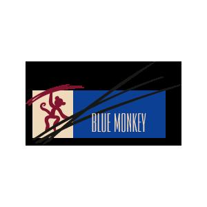 mc_logo-blue-monkey_RGB_300px - Quadrat